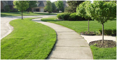 Commercial Landscaping Services & Grounds Maintenance